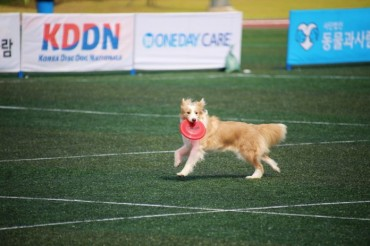 Leisure Sports Festival to Host Programs for Pets