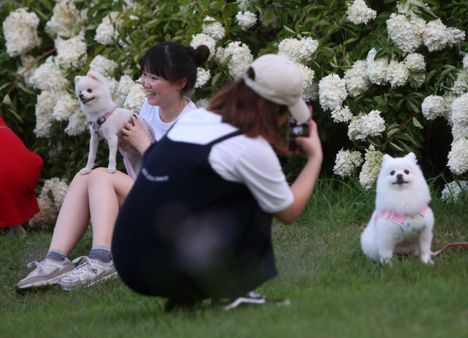 According to the lecture plan, students will learn how to raise their pets in the first half of the lecture and correct animal behavior that they can use in real life. (Yonhap)