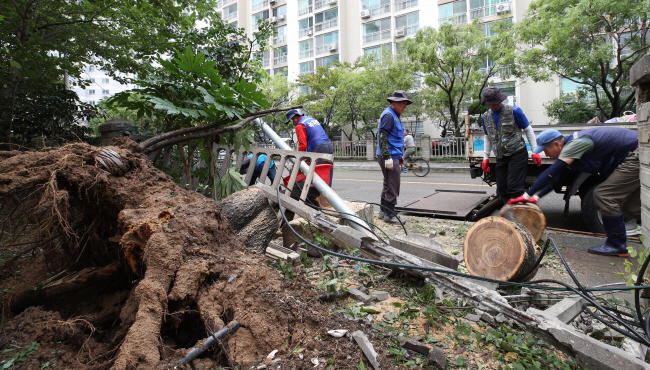 Officials work to repair damage caused by Typhoon Tapah at a residential complex in the country's southeastern port city of Busan on Sept. 23, 2019. (Yonhap)