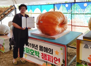 Uiryeong County Farmer Wins Super Pumpkin Contest
