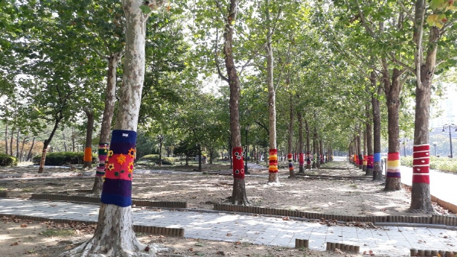 Anyang Clothes Trees with Wool Sweaters