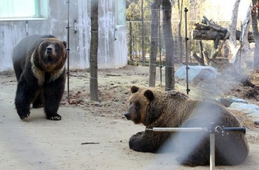 Zoo Goes Through Renovations to Better Accommodate Animals