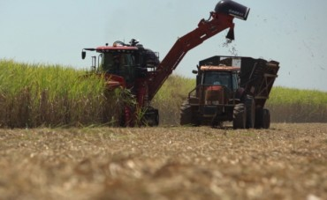 Behind the Wheel: Simply the Best – 75 years of Mechanized Sugar Cane Harvesting