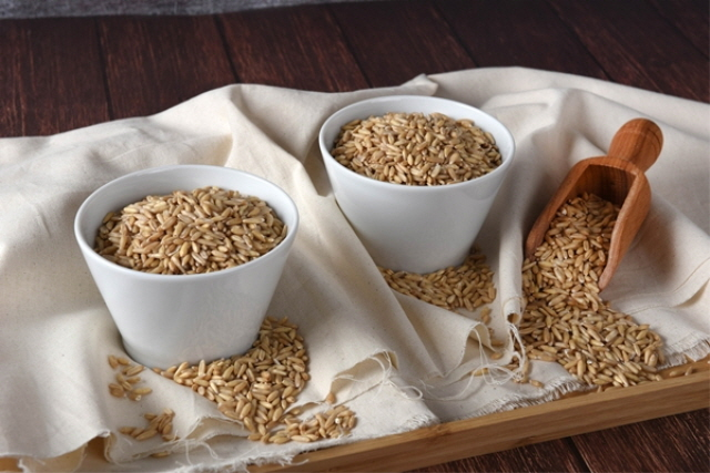 Research Confirms Substance in Oats Fights Dementia