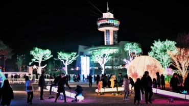 Boseong Celebrates Record of 280,000 Visitors at Tea Plantation Light Festival