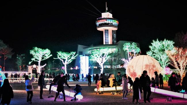 Boseong Celebrates Record of 280,000 Visitors at Tea Plantation Light Festival