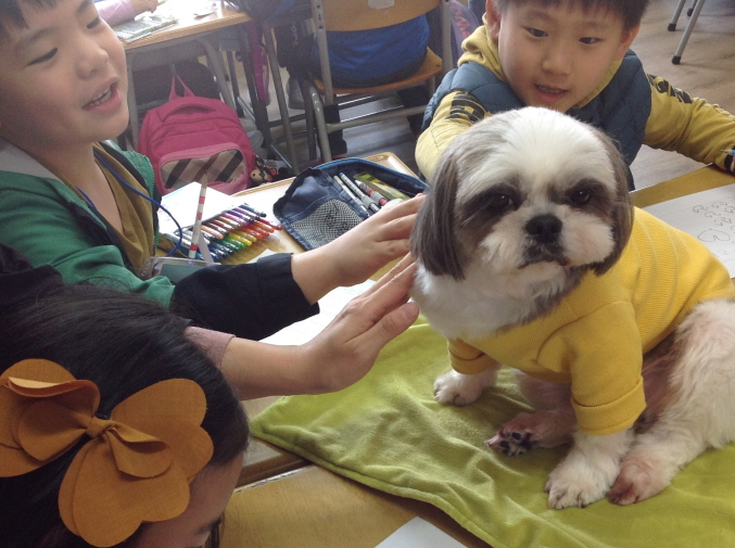 Animal love education helps children to feel the importance of life with their pets and develop their social skills by developing sensitivity. (image: Ulsan Metropolitan Office of Education)