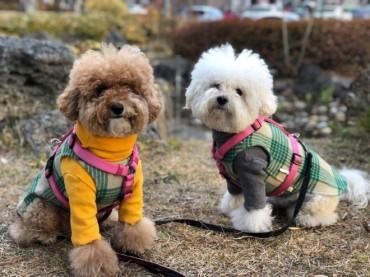 S. Korea to Strengthen Regulations for Better Animal Welfare