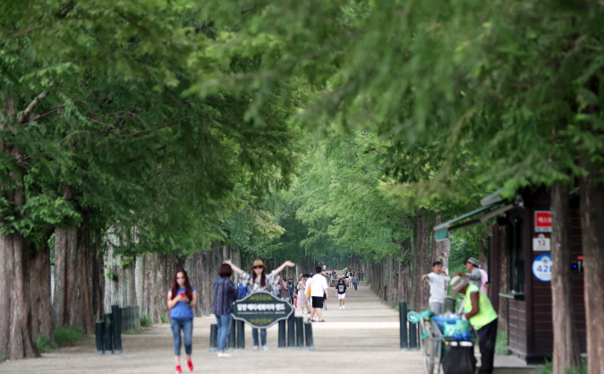 Court Rules Entrance Fee at Metasequoia Way is Legal