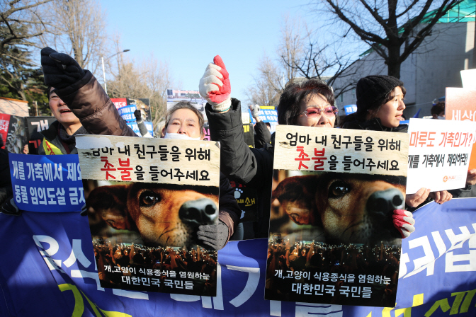 Animal rights groups stage a rally near the presidential office, Cheong Wa Dae in Seoul, on Jan. 12, 2020. (Yonhap)