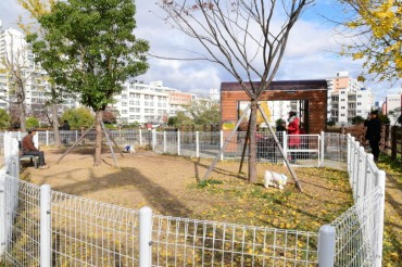 Busan's Dongnae District Opens Park for Pets