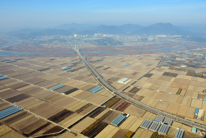 An aerial view of rice paddies in Naju, 355 kilometers south of Seoul. (Yonhap)