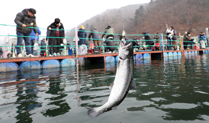 Tourists Brave Coronavirus, Unseasonal Weather to Enjoy Hwacheon Ice Fishing Festival