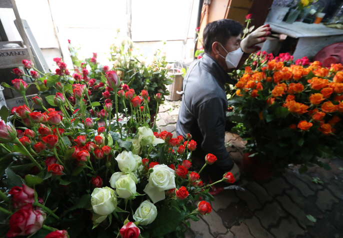 The demand for flowers in South Korea has fallen sharply over the past few weeks. (Yonhap)