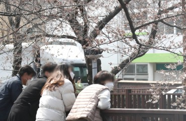 Changwon Bars Access to Cherry Blossom Sites amid Coronavirus Concerns