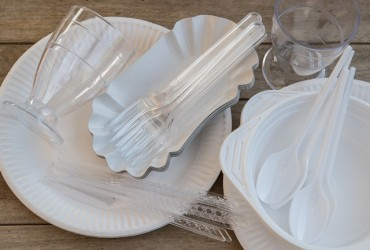 Disposable Plates Market Size to Rake US$ 5,963.7 Mn by 2027