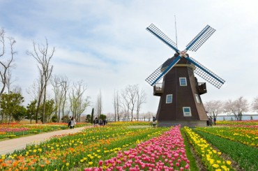 Dutch Embassy in Seoul Sends Tulips to Medical Staff