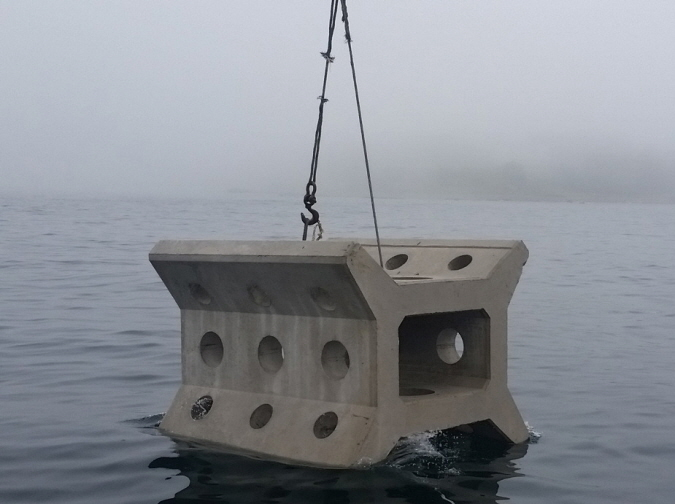 An artificial reef. (image: Korea Fisheries Resources Agency)