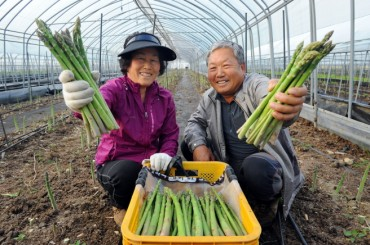 After Potato Promotion, Gangwon Province Moves On to Asparagus