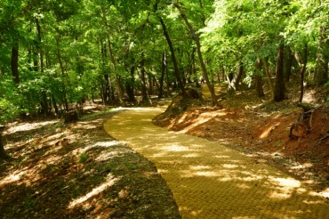 Walkways at Joseon Dynasty Royal Tomb Sites Open to Public
