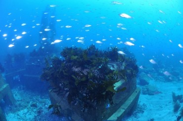 POSCO Transforms Steel Slag into Marine Reefs