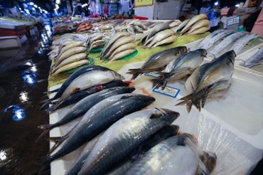 Tongyeong Unveils Plans for Innovative Online Fisheries Market