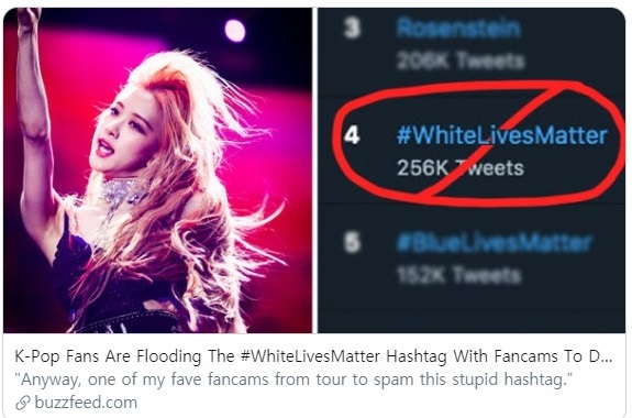 Pop stans meaning explained: Fans overshadow the 'White Lives Matter' hashtag