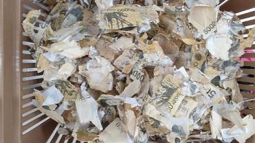 No. of Damaged Banknotes Grows amid Coronavirus Scare