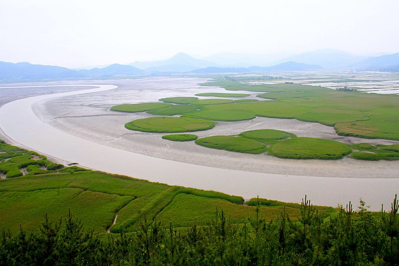 Suncheon_Ecological_Bay-_