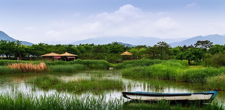 garden-suncheon-bay-plants-korea