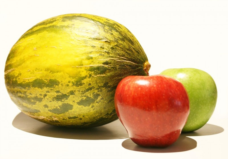 Jeju Tests Apple Melon as a New Cash Crop