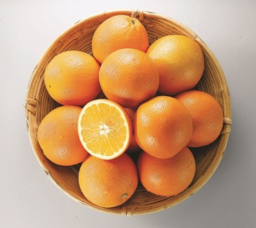 Korean Fruit Lovers Turn to Australian Navel Oranges During Summer Months