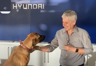Abandoned Dog Gets a Job at Hyundai Dealer in Brazil