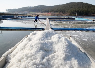 S. Korea Develops Salt-producing Solar Panel System