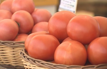 Hamburger Franchises Struggle with Tomato Supply Following Typhoon