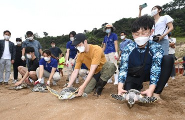 Sea Turtles Artificially Bred in S. Korea Settle in Vietnam