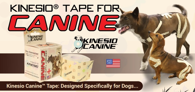 Kinesio Tape for Dogs?