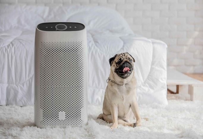 Health Diagnosis Kit, Litter Box Picked as Best Inventions for Pets