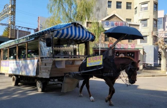Municipal Gov't Mistakenly Accused of Animal Abuse for Theme Park Horse Carriage