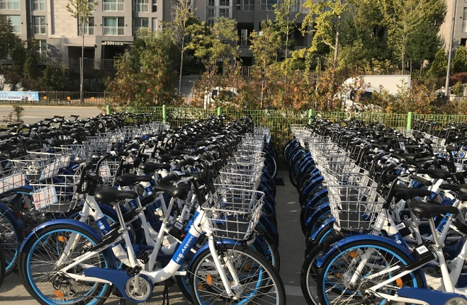 Sejong City Sees Increasing Number of Public Bicycle Users
