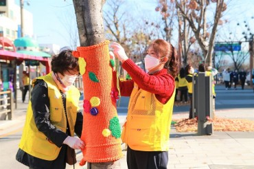 Jeonju Trees Get Warm Clothes for the Winter