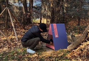 Seoul's Dobong District Installs Feeding Zones for Stray Cats