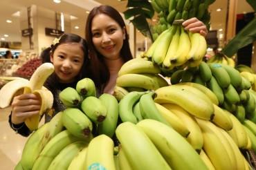 Eco-friendly Wando Bananas to Hit Market Next Year