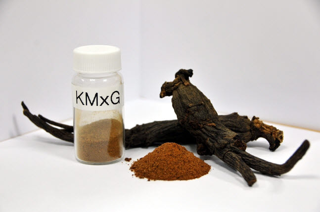 This photo provided by the Korea Institute of Science and Technology shows a microwave-processed red ginseng.