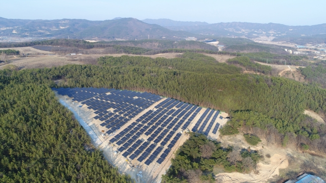 Moon Administration's Renewable Energy Policy Lays Waste to Environment