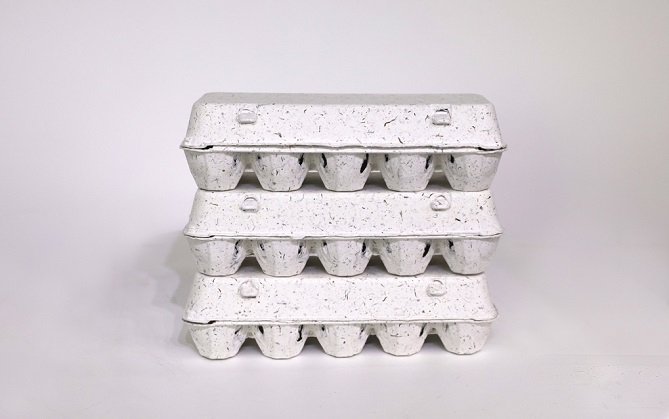 SK Innovation-backed Social Venture Develops Eco-friendly Seaweed Byproduct Egg Tray