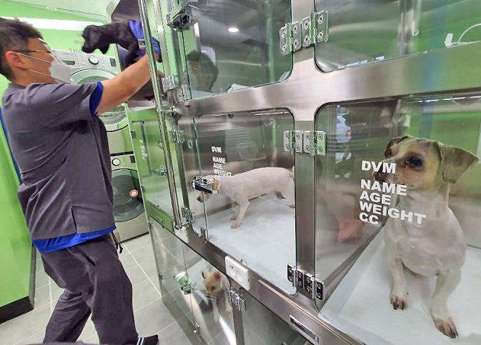 Local Gov'ts Provide Financial Assistance for Pet Medical Care