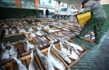 S. Korea Unveils Management Plan for Fishery Resources, Overfishing