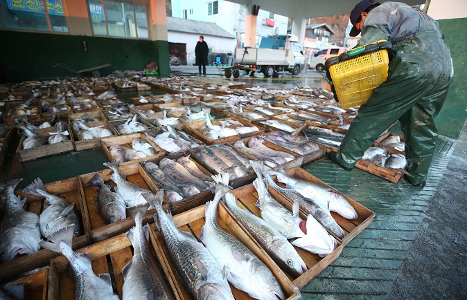 This file photo, taken Dec. 16, 2020, shows fish for sale in Geoje, 333 kilometers southeast of Seoul. (Yonhap)