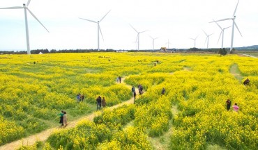 Jeju Island's Surplus Electricity Sent to Mainland